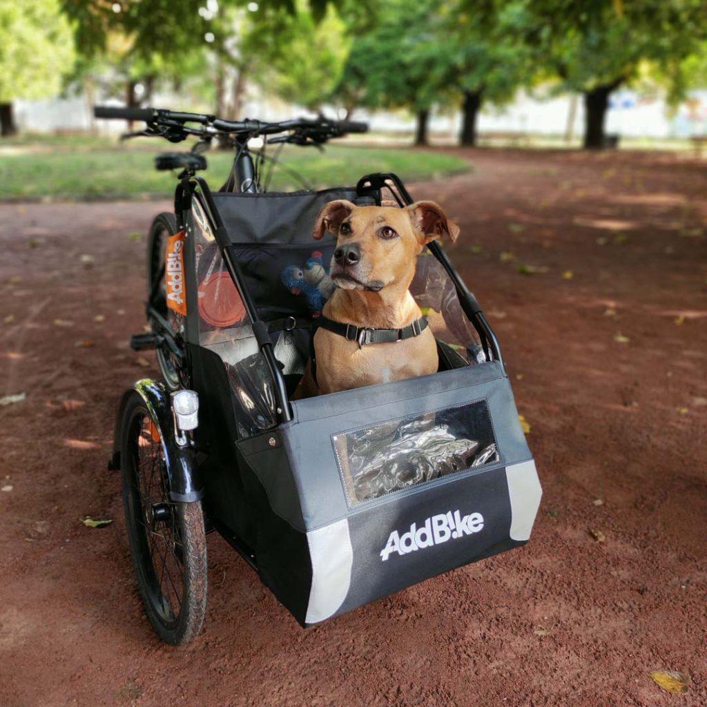 carry dog addbike